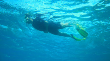 Randonnée Palmée - Snorkeling